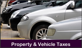 Property & Vehicle Taxes
